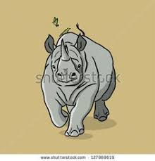 rhino dimensions sketches pinterest rhinos