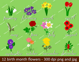 flower of the month birth month flowers etsy