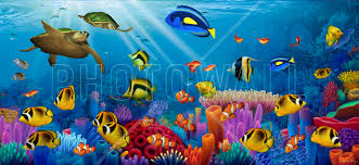 sea of life wall mural photo wallpaper photowall sea of life