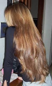side view of pulled back hair in a bun so what longhair back view side view 1 pinterest silky
