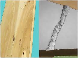 Where To Get Used Kitchen Cabinets How To Get Rid Of Termites With Pictures Wikihow