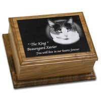pet cremation urns petsinstone home