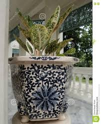 plant stand astounding uniqueant holders image inspirations