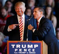 what does flynn plea deal mean just security