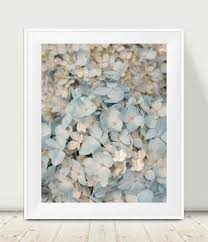 Shabby Chic Wall Art by Hydrangea Art Print Pastel Blue Ivory Wall Art Shabby Chic Art