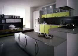 Modern Green Kitchen Cabinets Green Painted Kitchen Cabinets Zach Hooper Photo Green