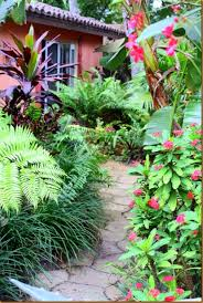 703 best landscape tropical images on pinterest landscaping
