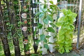 prepossessing 70 vegetable garden ideas for small spaces