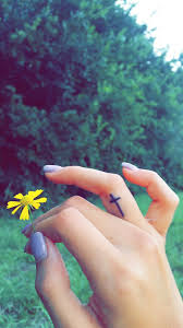 i ve been wanting this for years finger cross tat