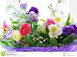 beautiful spring flowers stock photo image 43021704