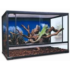 frog enclosures and cages for frogs amazing amazon