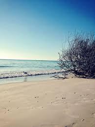 anna maria island my great wordpress blog