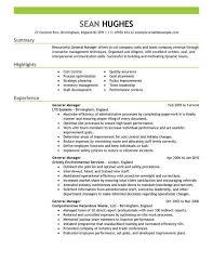 Hr Manager Resume Summary Hr Director Resume Cvlook03 Billybullock Us
