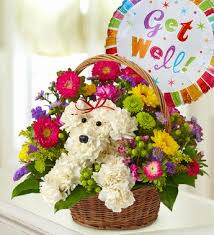 get well soon gift basket the hialeah florists flowers the hialeah fl the omel flower