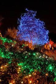 extreme christmas lights extreme christmas lights pinterest