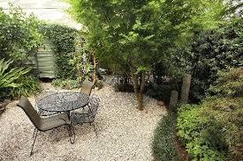 stylish backyard ideas no grass no grass landscaping home interior