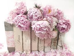pink peonies paris books romantic shabby chic wall art home decor