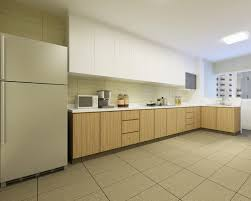 Home Design Ideas Singapore by Small Kitchen Design Ideas Singapore Interior Design