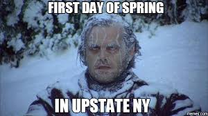 Memes New York - 15 hilariously accurate memes about new york