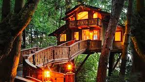 Cool Tree Houses Tree Houses To Live In Home Design
