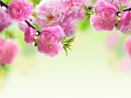 mothers day background pictures