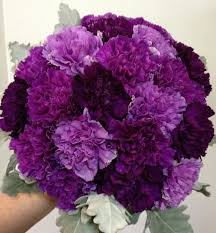 purple carnations wedding bouquet featuring purple grape carnations along with