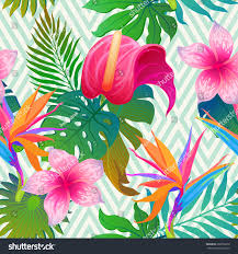 leaves flowers on geometrical ornament stock vector - Flowers On