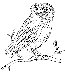 owl coloring pages to print funycoloring