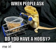 Lizard Toast Meme - gtky what s your favorite hobby the bump
