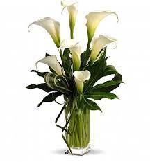white calla white calla tribute sympathy flower bouquet