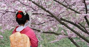 Japan Tours Vacation Packages & Travel Deals 2018 19
