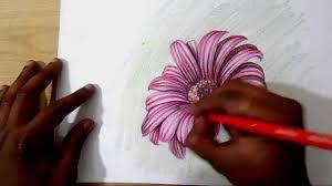 how to draw and shade dahlia flower realistic rishuka