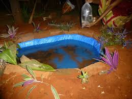 Building A Fish Pond In Your Backyard by Constructing A Small Fish Pond In The Garden 23 Steps With Pictures