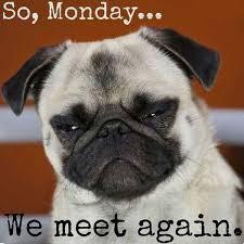 Monday Meme - 60 monday memes funny monday work memes
