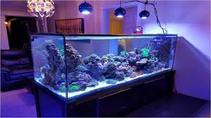 Reef Aquarium Lighting Marine Led Light Coral Grow Reef Tank White Blue Aquarium Fish