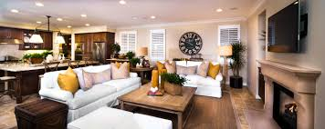 accessories endearing gypsum ceiling designs for living room