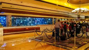 check in and aquarium
