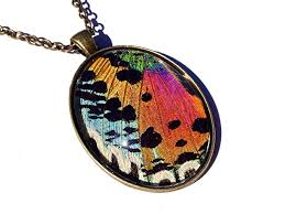 butterfly wing necklace images Real sunset moth necklace butterfly wing pendant jpg