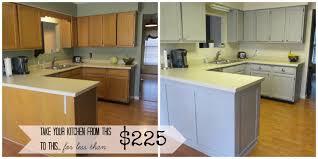 painting existing kitchen cupboard doors best 25 repainted