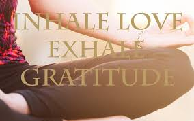 happy thanksgiving yogis let s be grateful today and every day