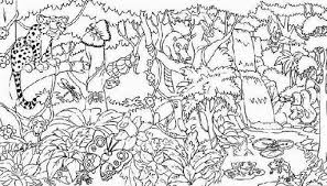 Free Coloring Page Of The Rainforest | rainforest coloring pages zigla info
