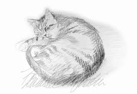 found artwork a sketch of stanley the creative cat