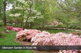 rock hill hotels find hotels in rock hill sc with reviews maps