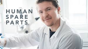 human spare parts stem cell research program
