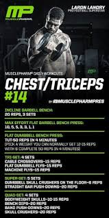 zyzz bench press 12 best images about workout zyzz on pinterest