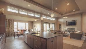kitchen best kitchen designs sydney room design decor luxury in