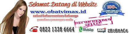jual obat vimax pembesar penis asli terbaik www obatvimax id