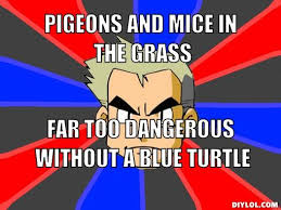 Professor Oak Meme - image professor oak meme generator pigeons and mice in the grass