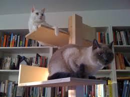 modern cat tree modern cat furniture house made of paper