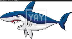angry shark cartoon vector yayimages com